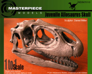 Juvenile Allosaurus Skull box Art copy