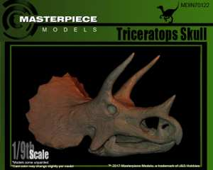 Triceratops Skull_box_art