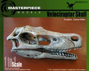 Velociraptor Skull box art