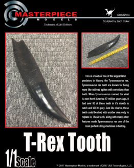 1 to 1 scale T-REX TOOTH sculpted by Zach Coker